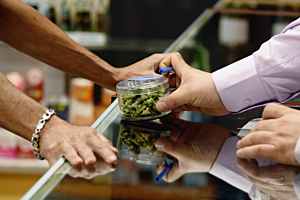 What Does the Resume of a Professional Budtender Look Like?
