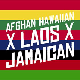 Afghan Hawaiian x Laos x Jamaican Feminized