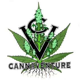 Cannaventure Seeds 425 Regula