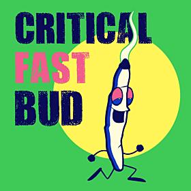 Critical Fast Bud Autoflower