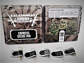 Kalashnikov Seeds Express Mix Fem
