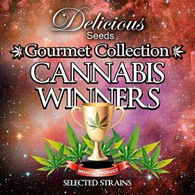 delicious gourmet cannabis winners