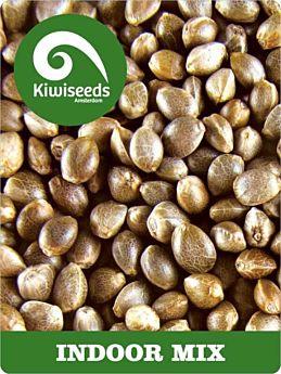 kiwi seeds indoor mix