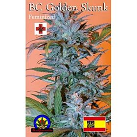 next generation golden skunk