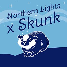 Skunk x Northern Lights