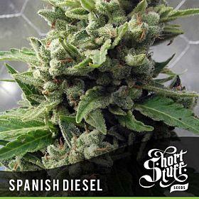 short stuff Auto Spanish Diesel