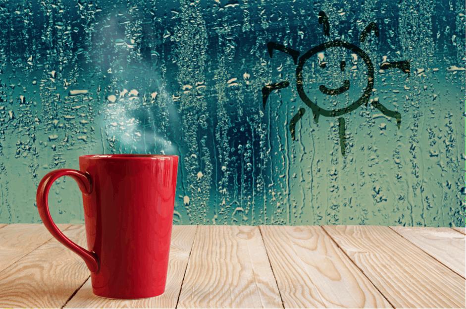 How to Handle Humidity in an Indoor Grow Room