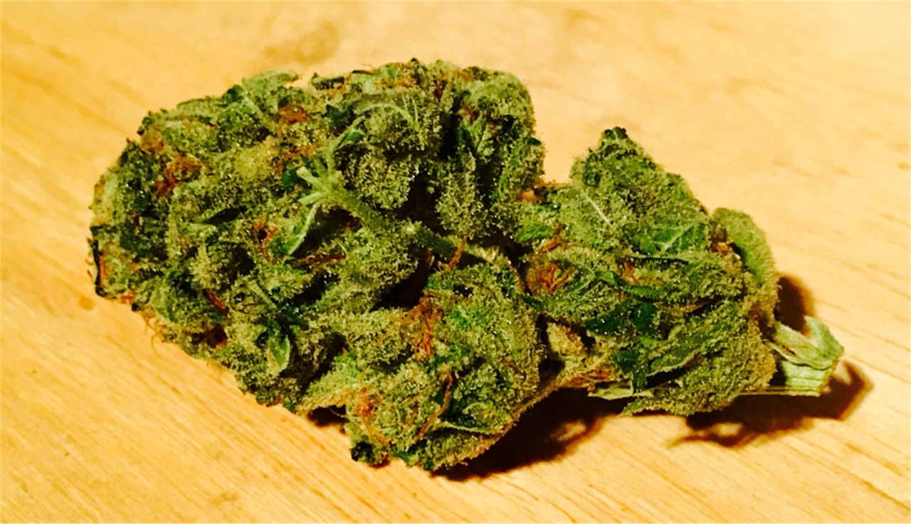 Pot Profiles: Chiesel