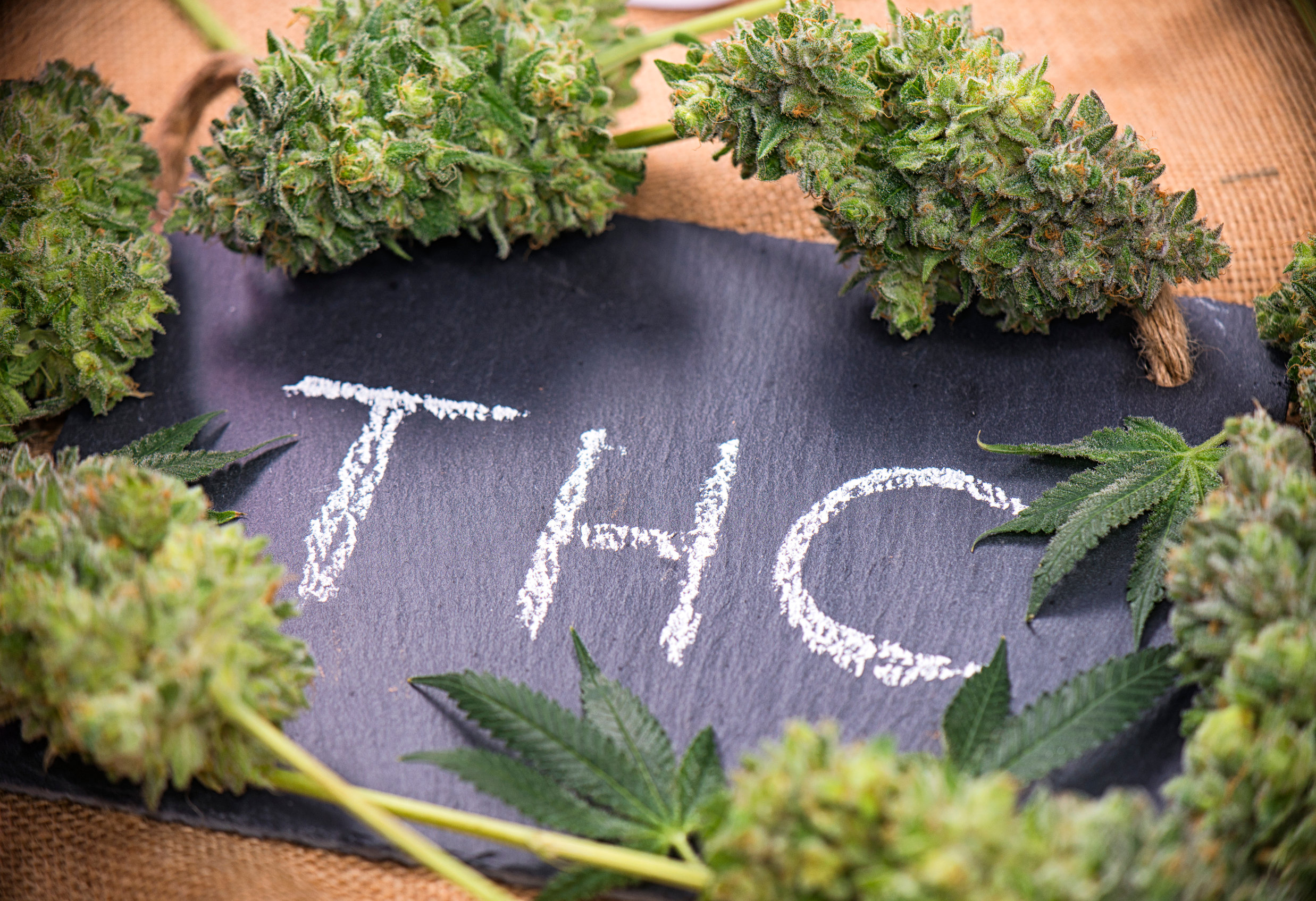 What does THC do to the body?