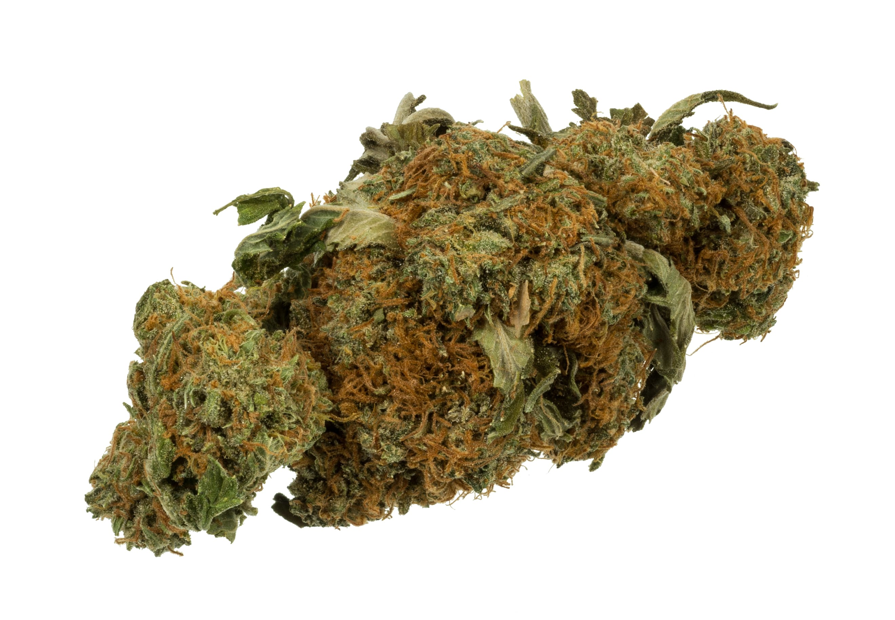 A Short, Informative History of Cannabis