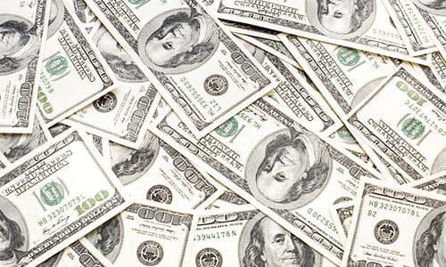 The Million Dollar Question - Pots or Soil?