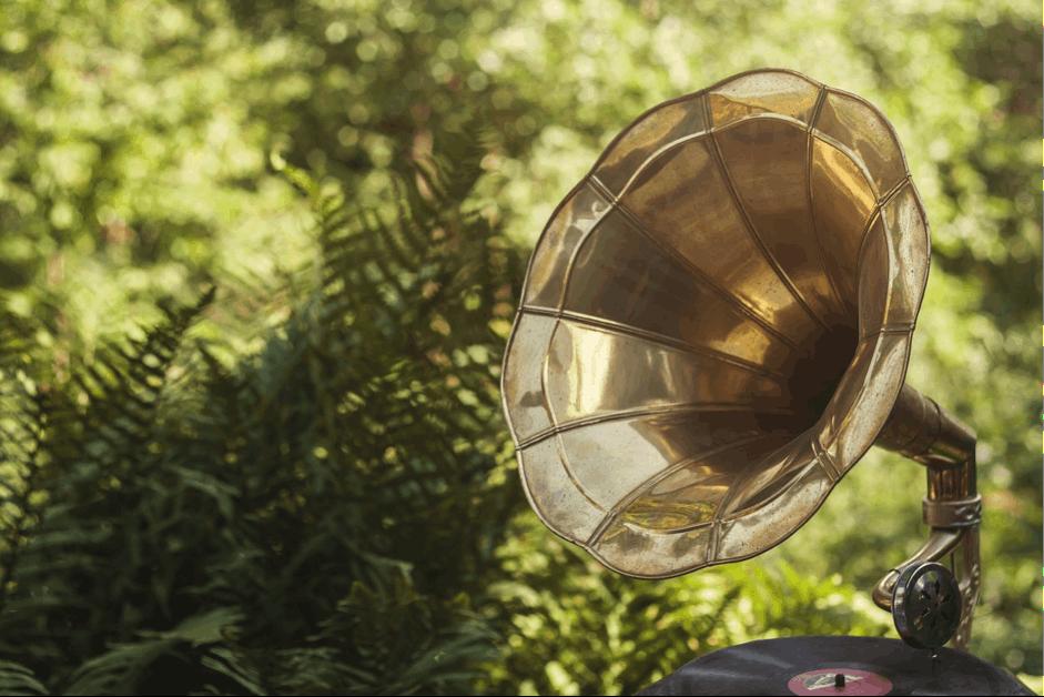 Hot Rocks: Do Cannabis Plants Really Like Music?