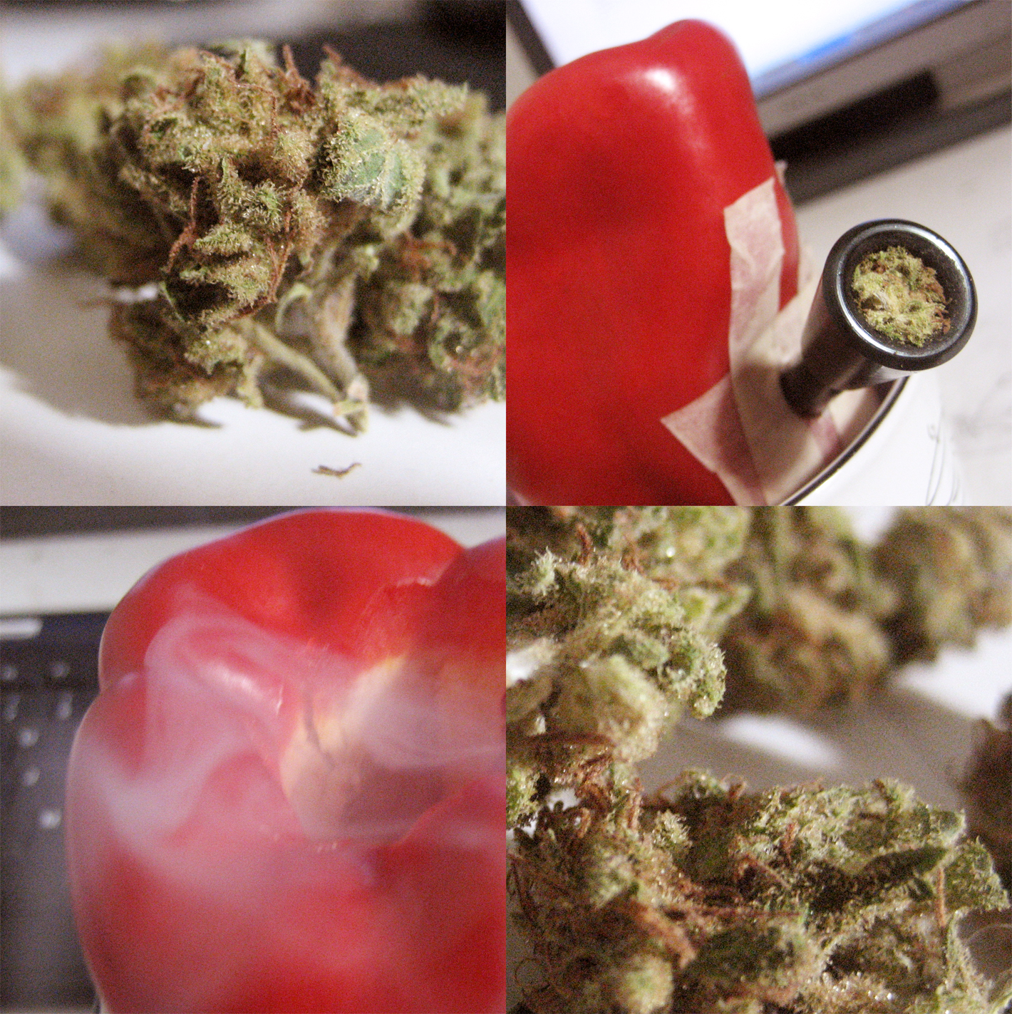 10 Bongs made with household items