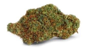 Tangie cannabis nug