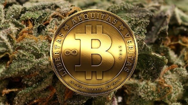 bitcoin cannabis